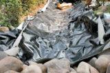 ⑤ビオトープの防水資材の選び方