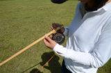 矢竹でフライロッドを作る