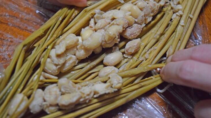 藁で自家製納豆を作る方法~水田ビオトープの恵み