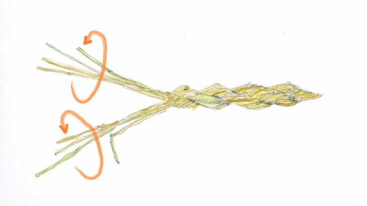 藁縄を作る方法