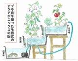 プラ舟で多段式アクアポニックス②~ポンプと植床